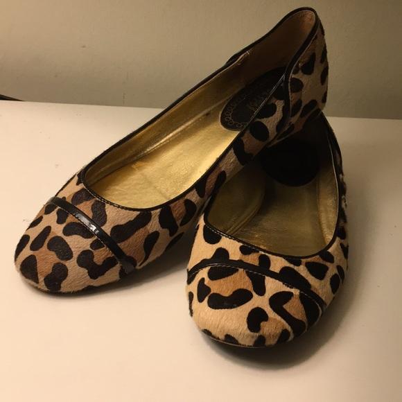 Coach Shoes   Coach Leopard Flats